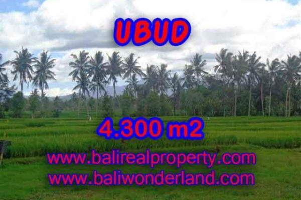 Land for sale in Bali, wonderful view in Ubud Bali – TJUB370