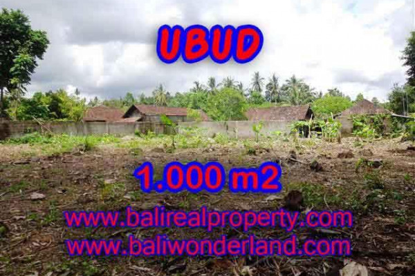 Beautiful Land for sale in Bali, green lush view by the creek in Ubud Bali – TJUB373