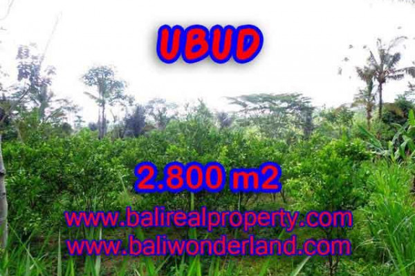 Outstanding Property for sale in Bali, land for sale in Ubud Bali – TJUB375