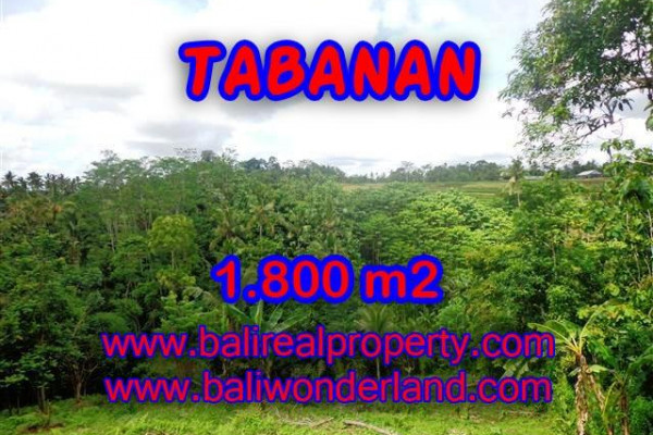 Land in Tabanan Bali for sale, nice view in Tabanan Penebel Bali – TJTB088