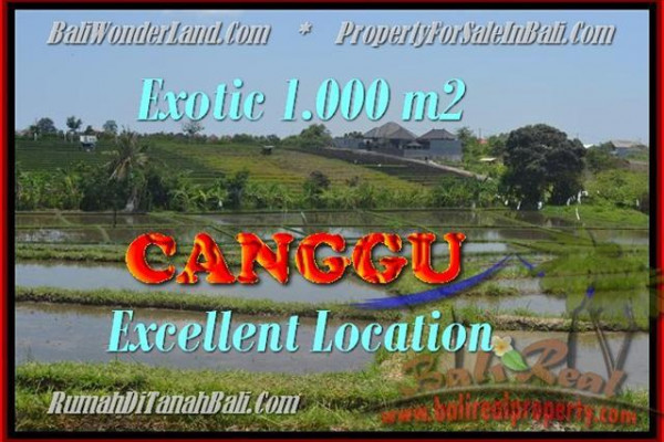 Beautiful 1.000 m2 LAND FOR SALE IN CANGGU TJCG168