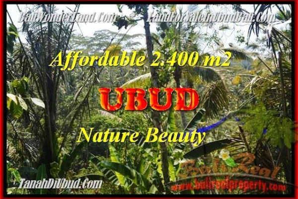 Magnificent LAND SALE IN UBUD BALI TJUB454