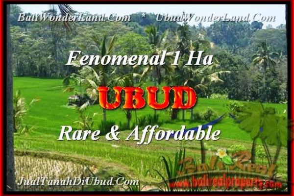 FOR SALE Beautiful PROPERTY 10000 m2 LAND IN Ubud Pejeng BALI TJUB456