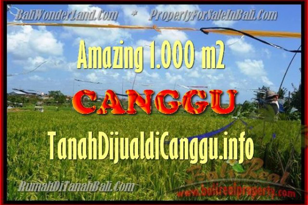 Affordable PROPERTY 1.000 m2 LAND FOR SALE IN CANGGU TJCG154