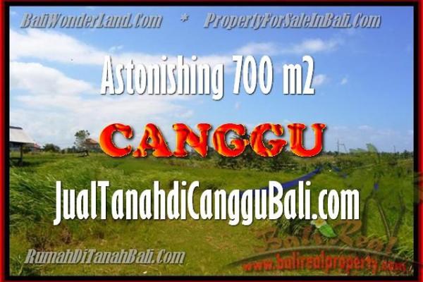 Exotic 700 m2 LAND SALE IN Canggu Kayu tulang BALI TJCG155