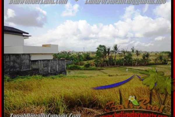 Exotic PROPERTY CANGGU 500 m2 LAND FOR SALE TJCG163