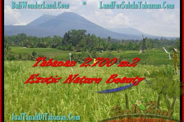Affordable TABANAN 2.700 m2 LAND FOR SALE TJTB175