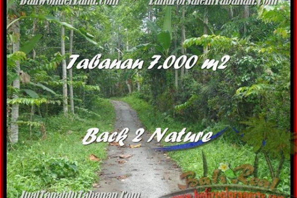 Beautiful PROPERTY LAND FOR SALE IN TABANAN TJTB176