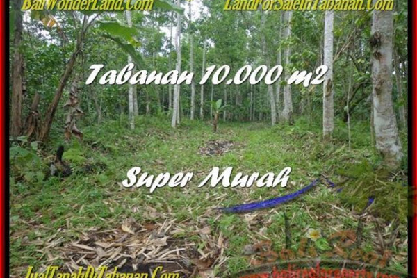 FOR SALE Exotic PROPERTY LAND IN Tabanan Penebel BALI TJTB177