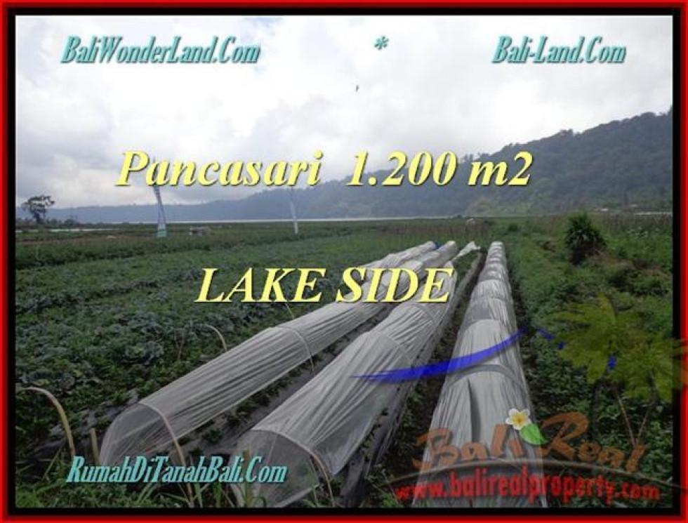 LAND FOR SALE IN Tabanan Bedugul BALI