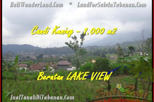 Beautiful Tabanan Bedugul BALI LAND FOR SALE TJTB180