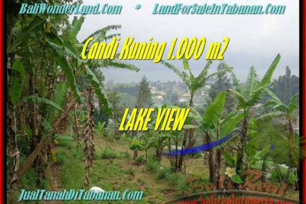 Exotic LAND FOR SALE IN Tabanan Bedugul BALI TJTB181