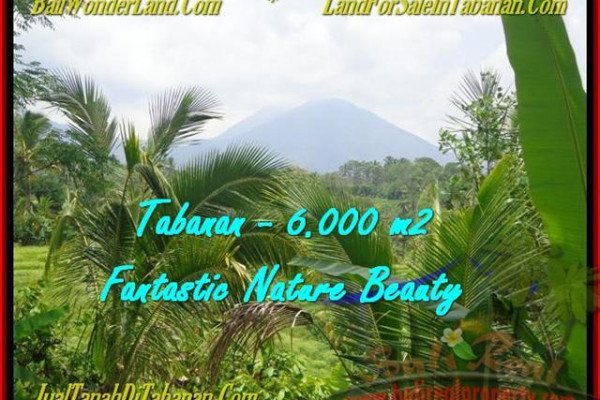FOR SALE Magnificent PROPERTY 6.000 m2 LAND IN TABANAN BALI TJTB182