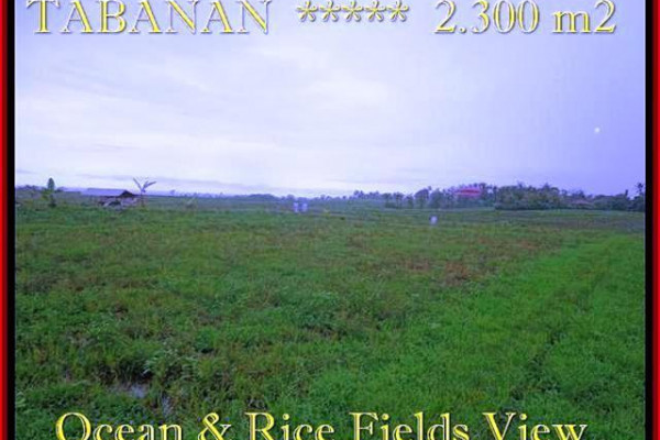 Magnificent PROPERTY TABANAN BALI 2.300 m2 LAND FOR SALE TJTB184