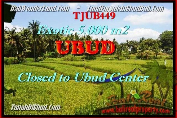 Exotic 5.000 m2 LAND IN UBUD FOR SALE TJUB449