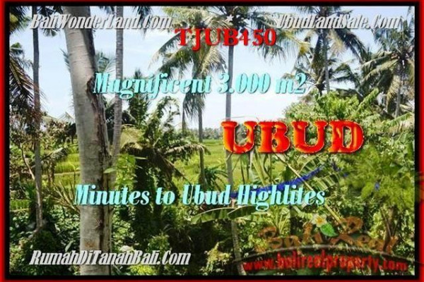 FOR SALE Beautiful 3.000 m2 LAND IN UBUD TJUB450