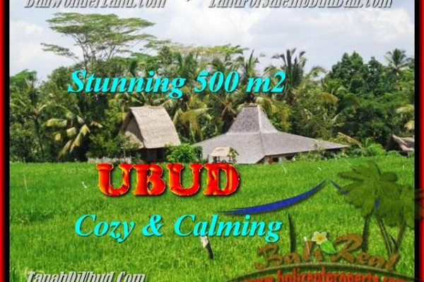 Exotic PROPERTY LAND SALE IN Ubud Payangan BALI TJUB459