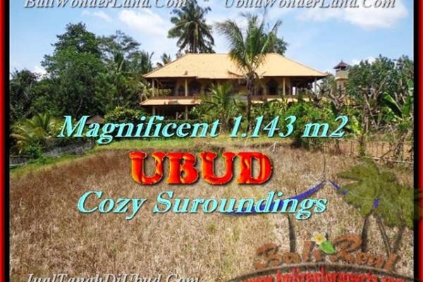 Beautiful PROPERTY Sentral Ubud BALI 1.143 m2 LAND FOR SALE TJUB460