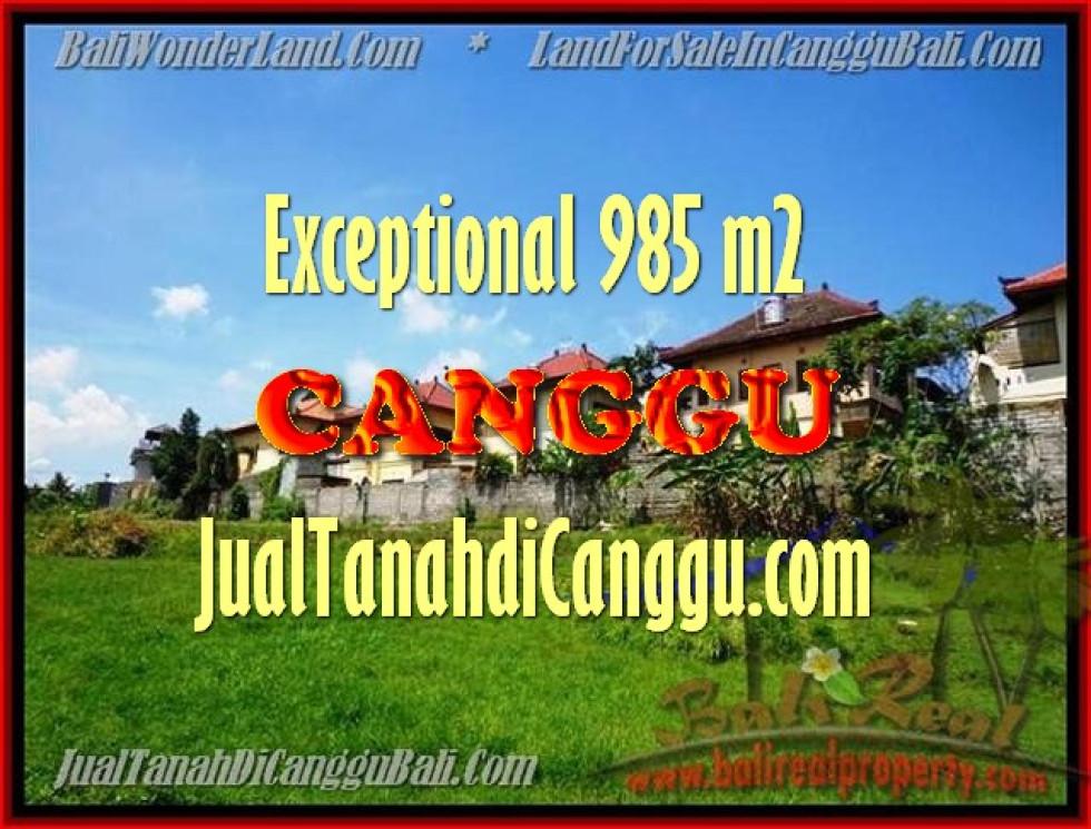 Exotic LAND IN Canggu Pererenan FOR SALE