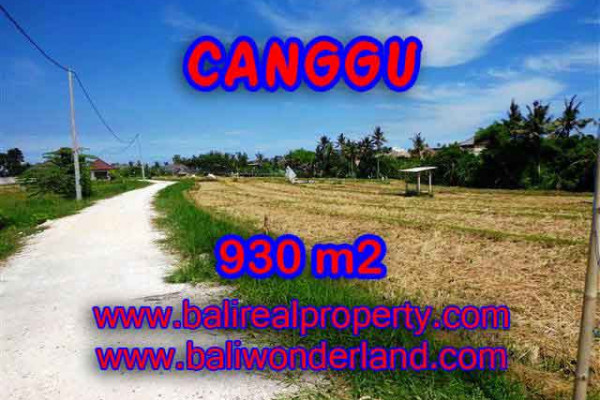 Magnificent LAND FOR SALE IN Canggu Pererenan TJCG146