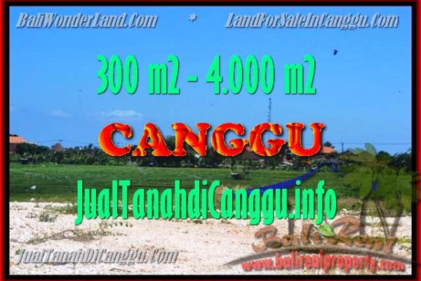 Beautiful PROPERTY 300 m2 LAND SALE IN CANGGU TJCG151