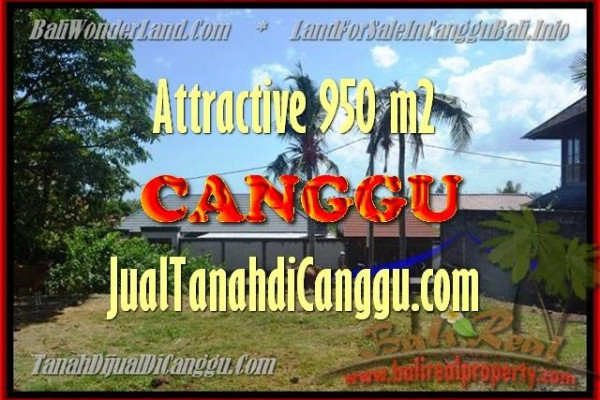 Magnificent PROPERTY CANGGU 450 m2 LAND FOR SALE TJCG153