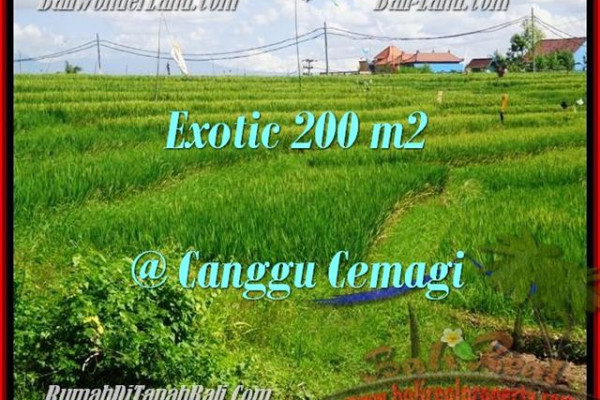 200 m2 LAND SALE IN Canggu Cemagi BALI TJCG170