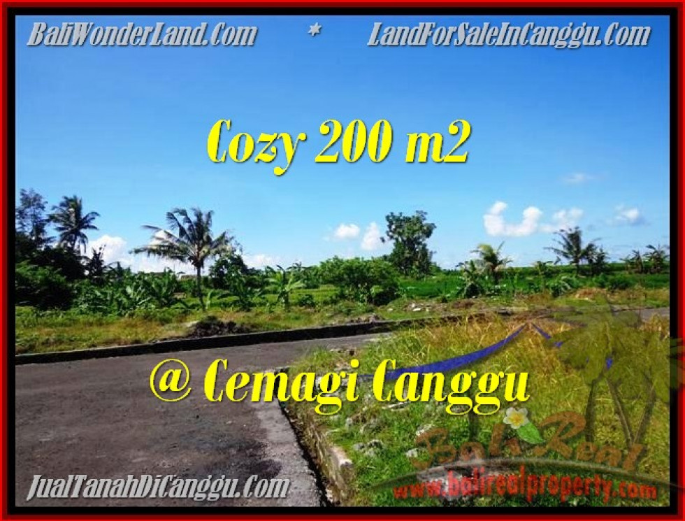 Magnificent 200 m2 LAND FOR SALE IN CANGGU TJCG171