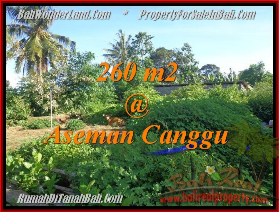 Beautiful 260 m2 LAND IN CANGGU FOR SALE