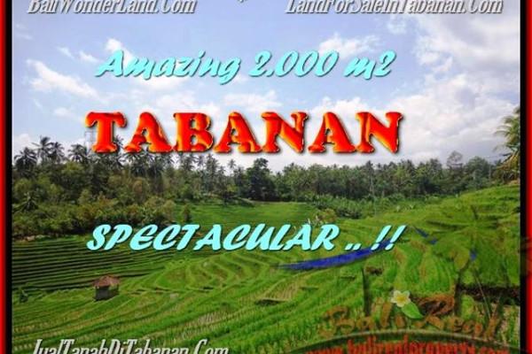Beautiful PROPERTY TABANAN LAND FOR SALE