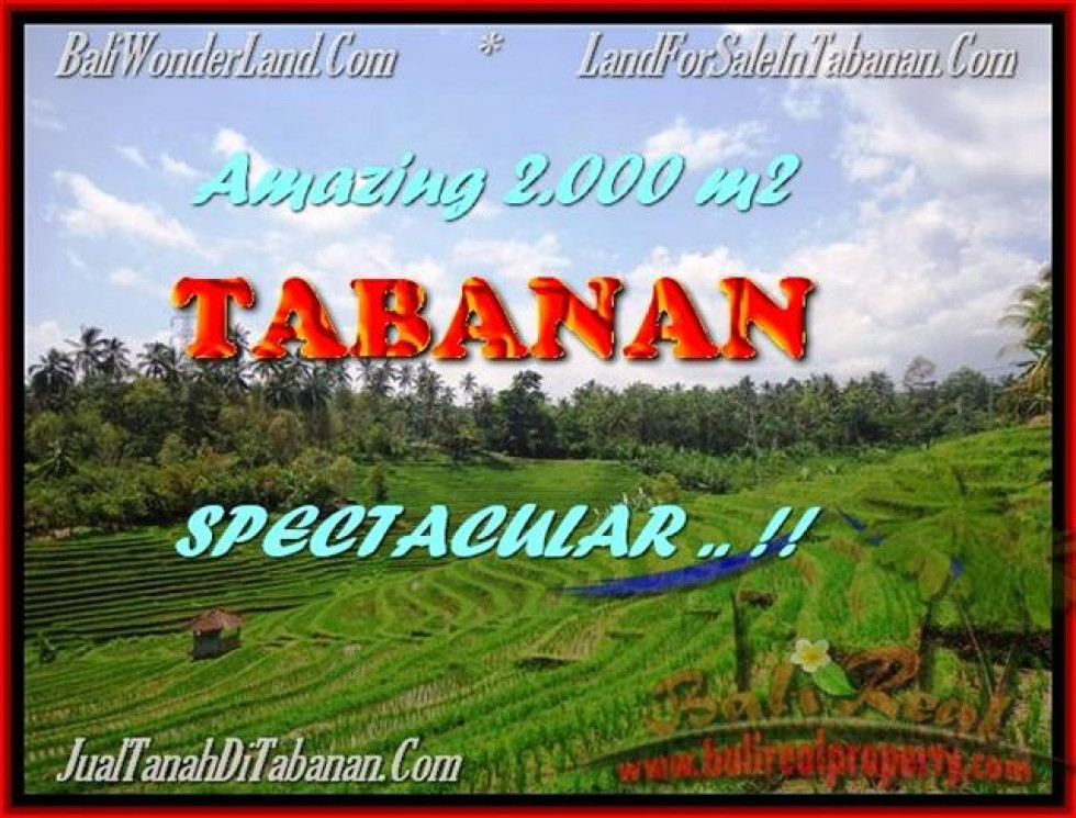 Beautiful PROPERTY TABANAN LAND FOR SALE