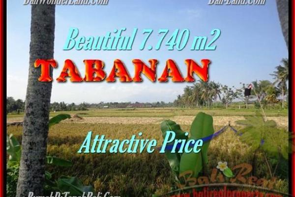 Exotic 7.740 m2 LAND SALE IN TABANAN TJTB173