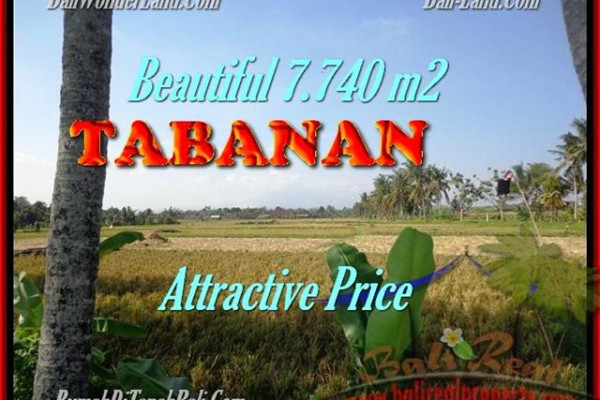 Magnificent PROPERTY LAND IN TABANAN FOR SALE TJTB173