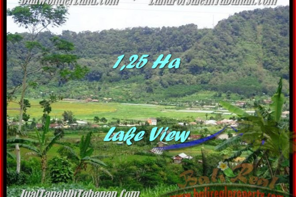 FOR SALE Exotic 12,500 m2 LAND IN TABANAN TJTB188