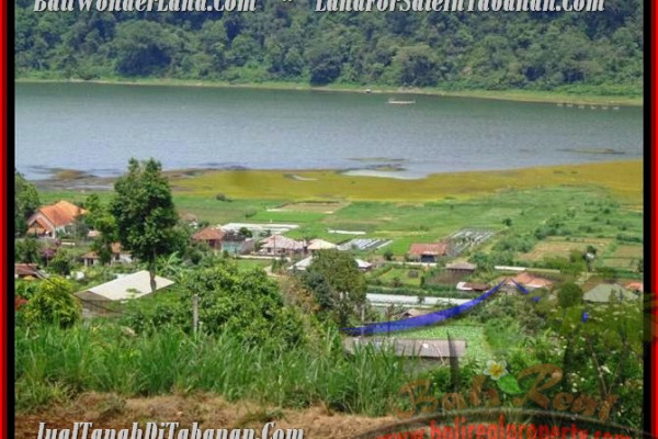 TABANAN 17,800 m2 LAND FOR SALE TJTB189