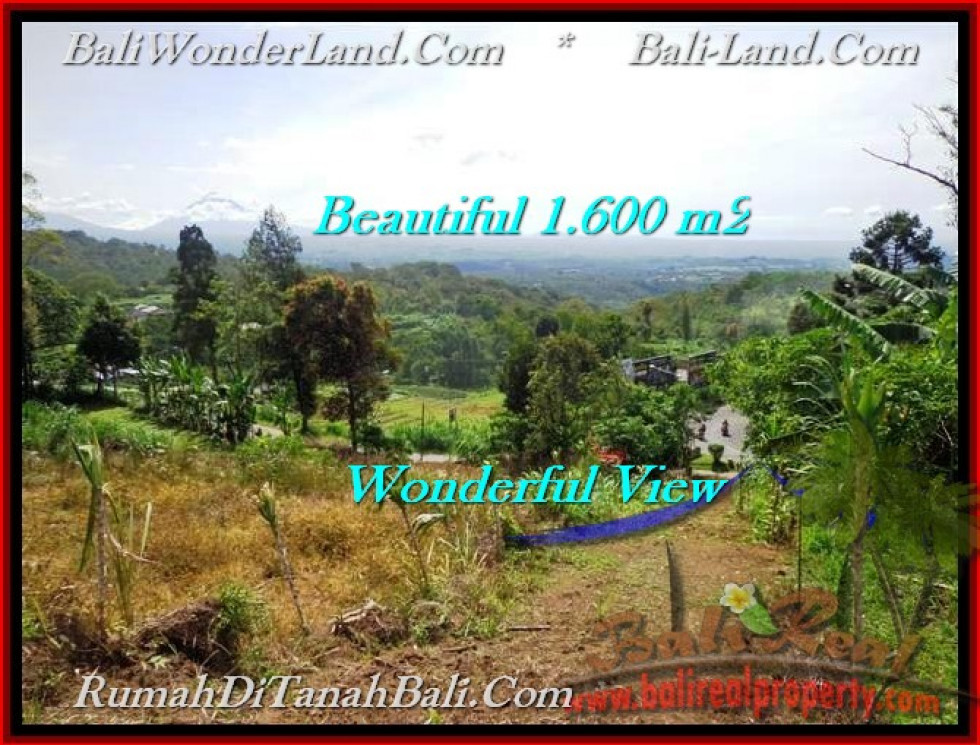 LAND IN Tabanan Bedugul BALI FOR SALE TJTB194