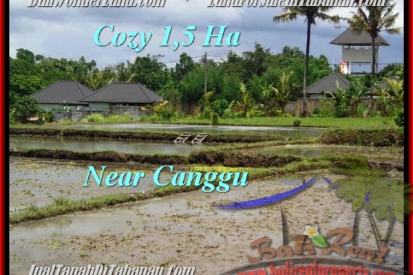 Magnificent PROPERTY 15,000 m2 LAND FOR SALE IN Tabanan Tanah Lot TJTB196