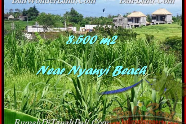 Affordable PROPERTY 8,500 m2 LAND SALE IN TABANAN BALI TJTB198