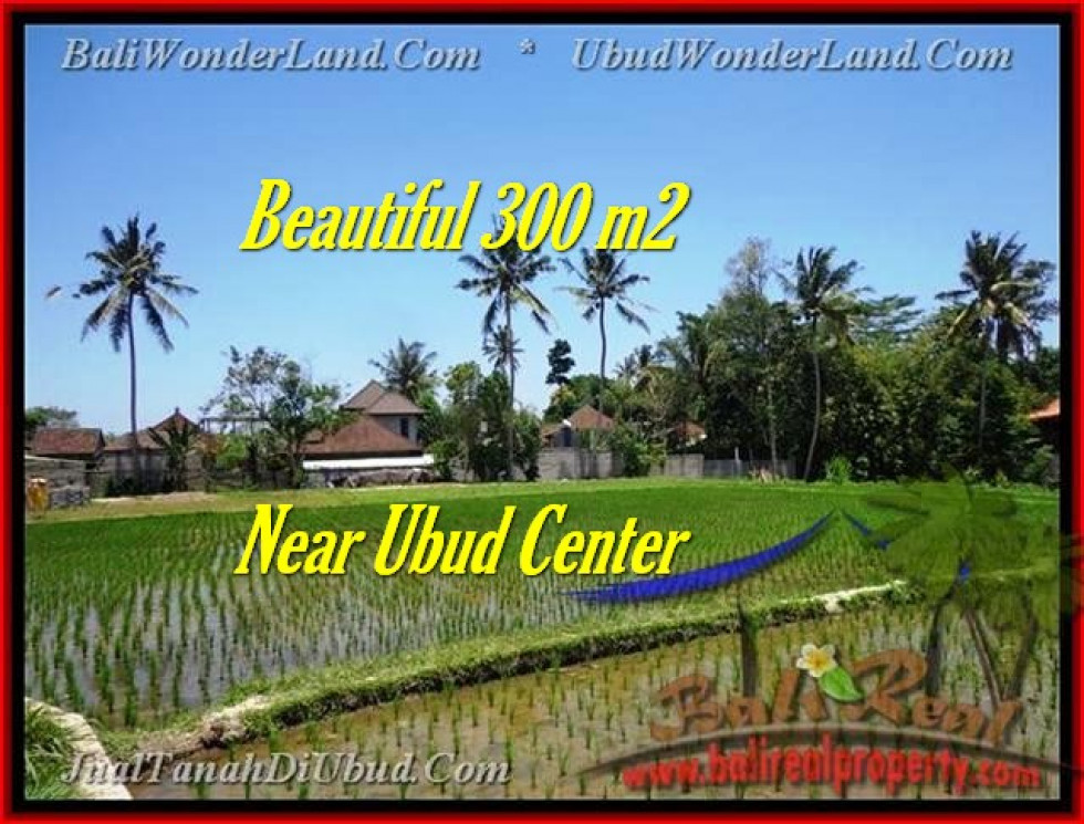 Beautiful PROPERTY LAND FOR SALE IN UBUD TJUB436