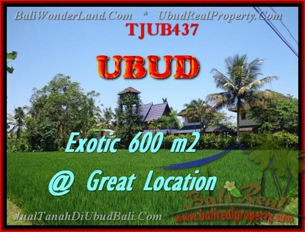 600 m2 LAND IN UBUD FOR SALE TJUB437