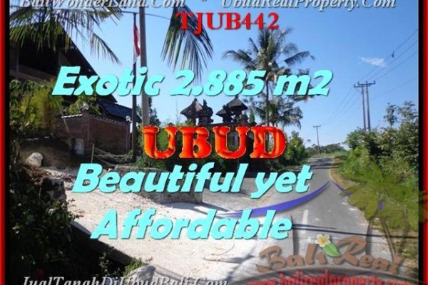 FOR SALE Affordable LAND IN Ubud Pejeng TJUB442