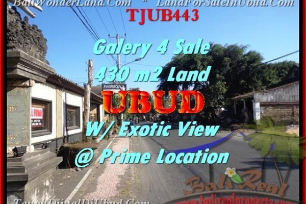 Magnificent PROPERTY UBUD BALI 430 m2 LAND FOR SALE TJUB443