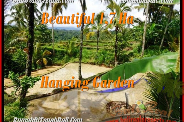 Affordable PROPERTY 17,000 m2 LAND IN UBUD BALI FOR SALE TJUB470