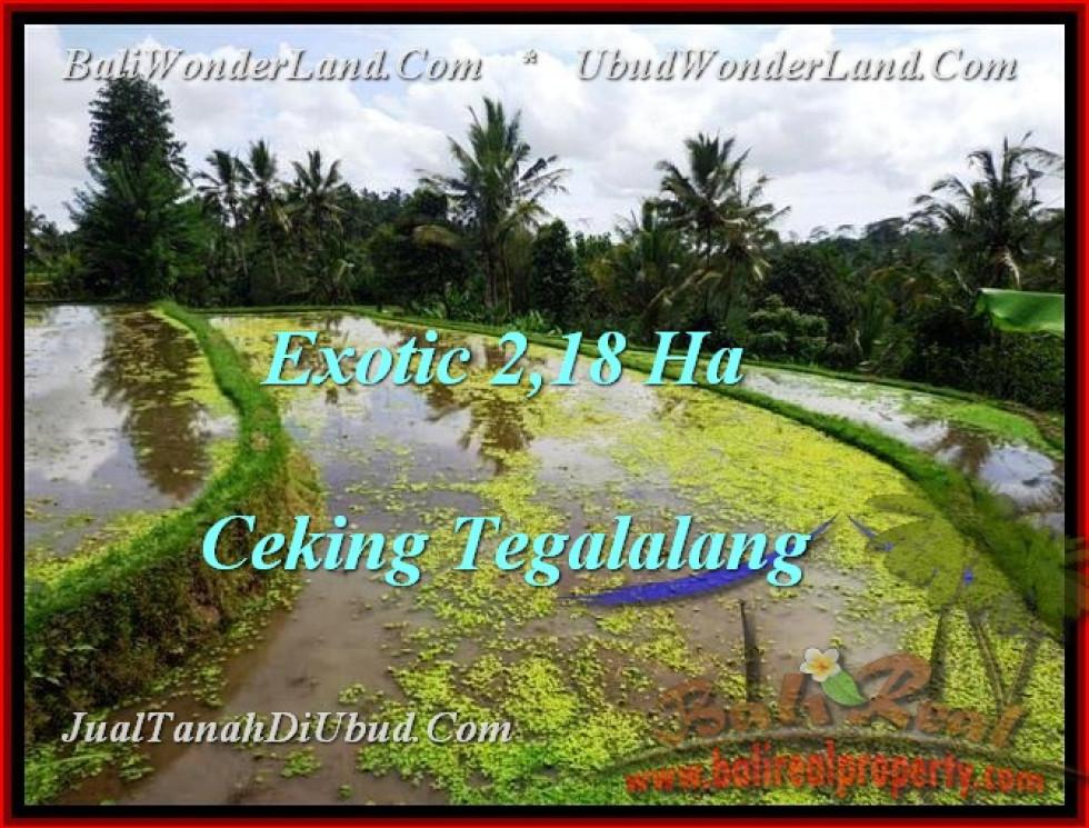 Affordable UBUD 21,800 m2 LAND FOR SALE TJUB471