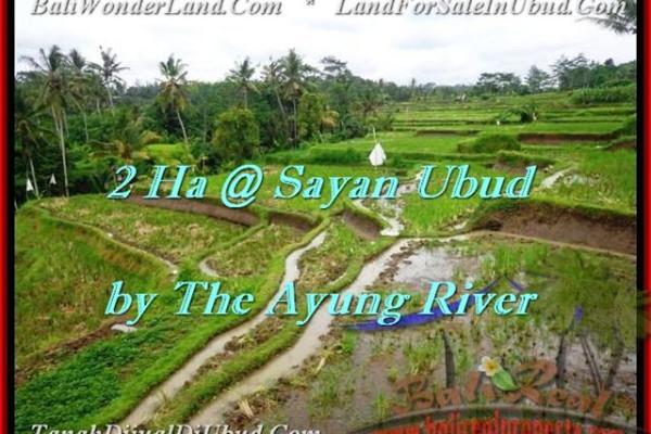 FOR SALE Beautiful PROPERTY LAND IN Ubud Center BALI TJUB473