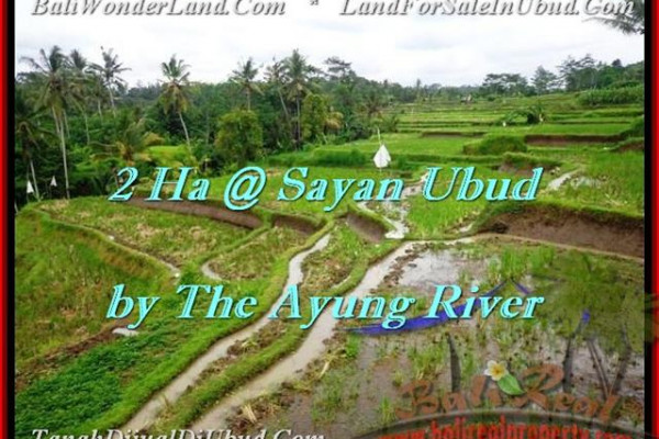 Affordable UBUD 20,000 m2 LAND FOR SALE TJUB473