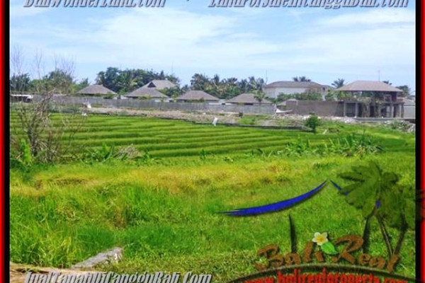 Magnificent PROPERTY CANGGU BALI 1.450 m2 LAND FOR SALE TJCG137