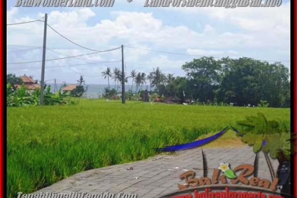 Exotic PROPERTY CANGGU 560 m2 LAND FOR SALE TJCG138