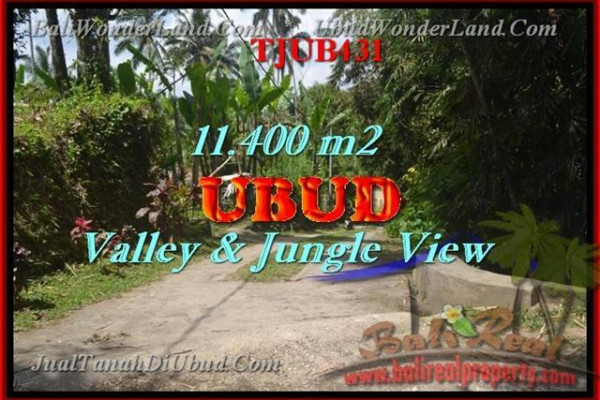 Magnificent PROPERTY LAND FOR SALE IN UBUD TJUB431