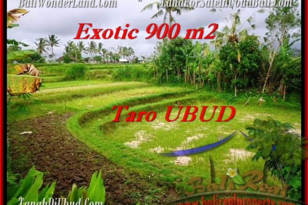 Exotic LAND IN Ubud Tegalalang BALI FOR SALE TJUB464